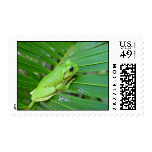 Small Green Frog Stamps