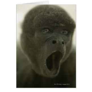 Small grey monkey, outdoors, portrait card