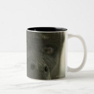 Small grey monkey, outdoors, portrait Two-Tone coffee mug