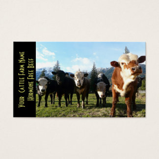 Small Herd of Beef Cattle Business Card