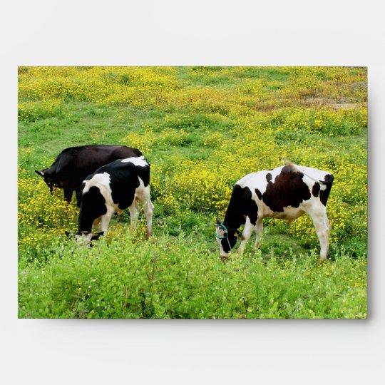 Small herd of bulls envelope