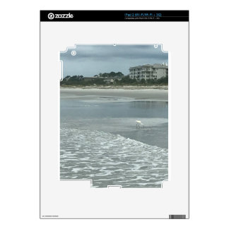 Small heron on the beach skins for iPad 2