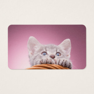 Small kitten business card