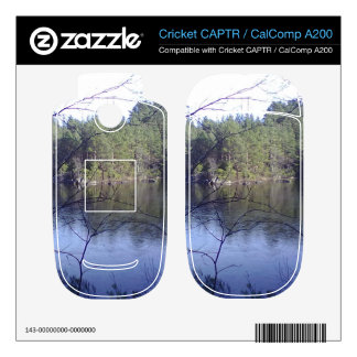 Small lake and trees cricket CAPTR skin