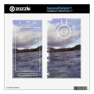 Small lake toshiba REGZA decals