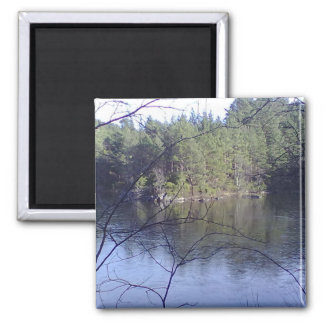 Small Lake with trees 2 Inch Square Magnet