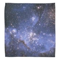 Small Magellanic Cloud Galaxy Bandana
