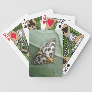 Small Magpie Moth Playing Cards
