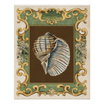 Small Mermaid's Shells Poster