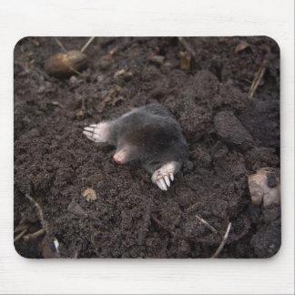 Small mole mouse pad