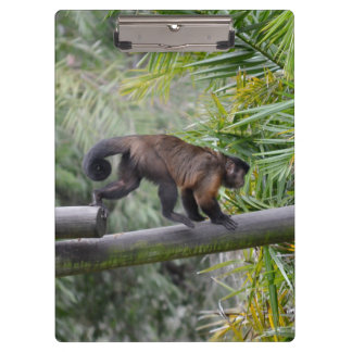 small monkey running across railing clipboard