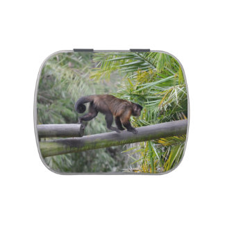 small monkey running across railing jelly belly candy tins