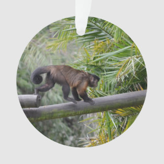 small monkey running across railing ornament