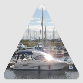 Small Motorboat Catching The Sun Triangle Sticker