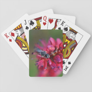 Small Native Bee on a Red Flower Playing Cards