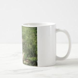 Small Oasis Classic White Coffee Mug