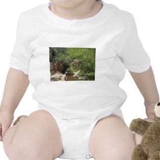 Small Oasis Tshirt