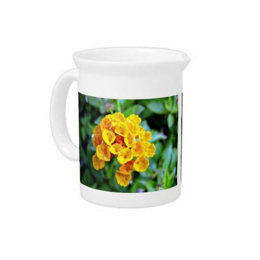 Small orange flowers beverage pitchers