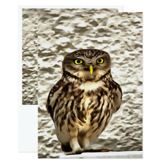 Small Owl In Camouflage Card