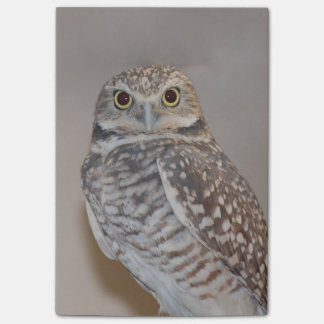 Small Owl Post-it Notes