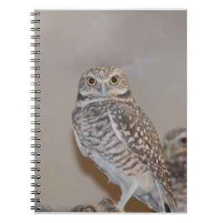 Small Owl Spiral Notebook