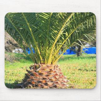 Small Palm Tree Mousepad