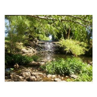 Small Park Waterfall Postcard
