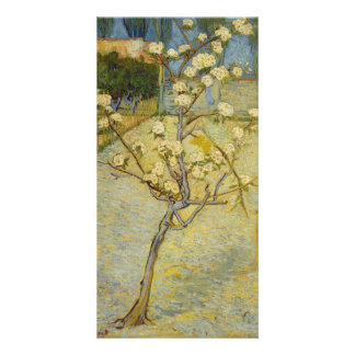 Small Pear Tree in Blossom by Vincent Van Gogh Card