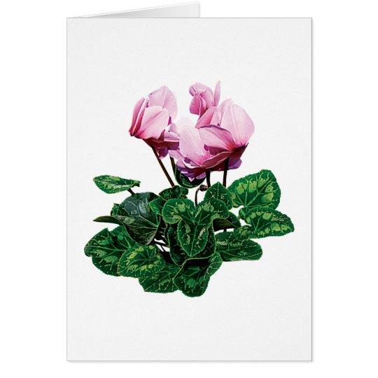 Small Pink Cyclamen Card