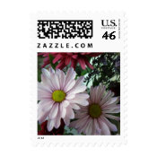 Small Pink Floral Postage stamp