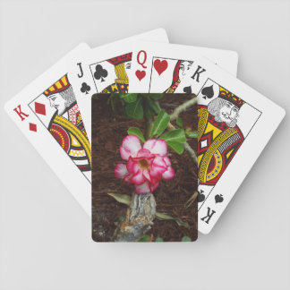 Small Pink Flower Playing Cards
