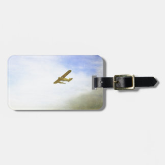 Small plane with blue sky tags for bags
