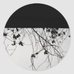 Small plant branches falling over a ledge round stickers