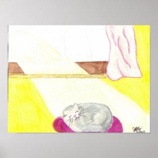 Small Poster Kitty Asleep in Sun