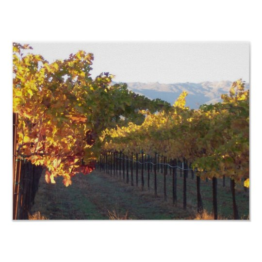 Small Poster of Fall Vineyard
