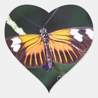 Small Postman Butterfly Heart Sticker