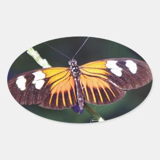 Small Postman Butterfly Oval Sticker