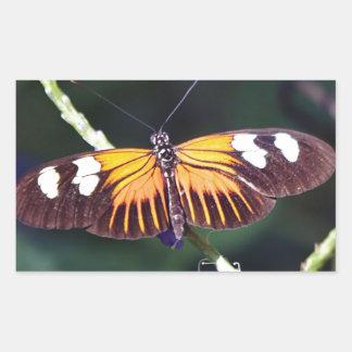 Small Postman Butterfly Rectangular Sticker