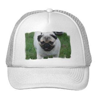 Small Pug Puppy Baseball Hat