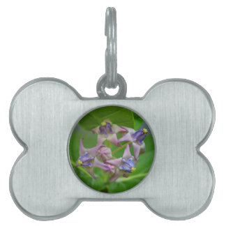 small purple flowers against green leaves pet ID tags