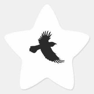 SMALL RAVEN STAR STICKER