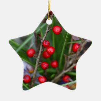 Small red berries on a Cotoneaster bush. Ceramic Ornament