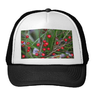 Small red berries on a Cotoneaster bush. Trucker Hat