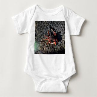 small red crab on rock animal nature baby bodysuit