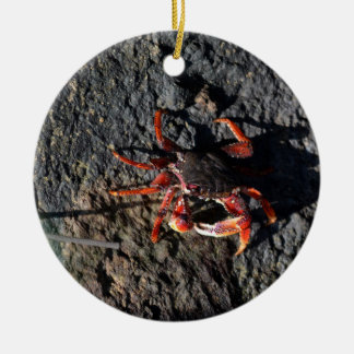 small red crab on rock animal nature ceramic ornament