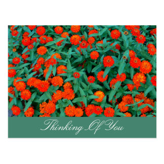 SMALL RED FLOWERS/GREEN FOLIAGE/THINKING OF YOU POSTCARD