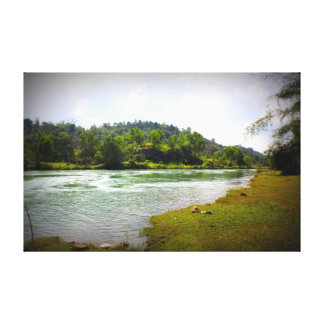 small river in a forest canvas print