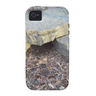 Small Rock Formation Case-Mate iPhone 4 Cases