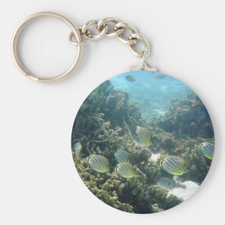 Small School of Butterfly Fish Keychain
