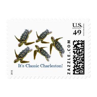 Small Sea Turtles of Charleston Stamps